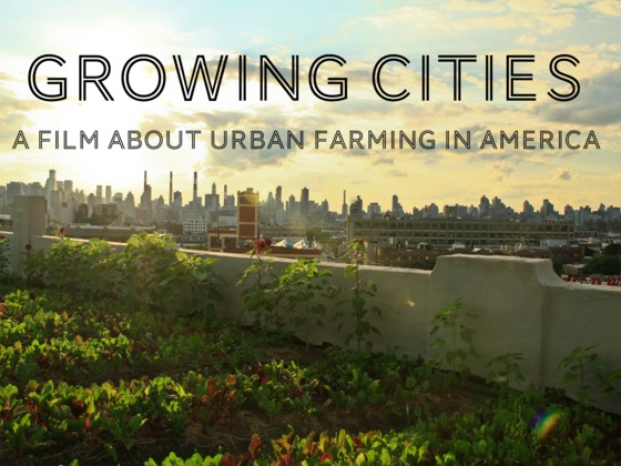growing-cities-food-documentary